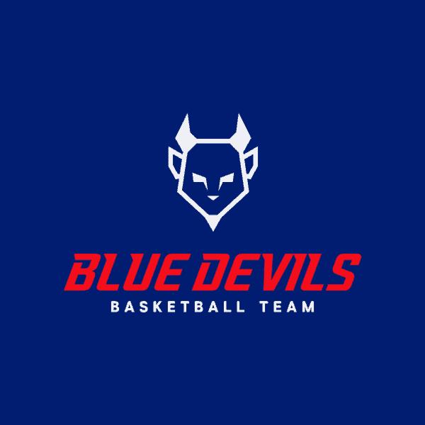 Basketball team logo example